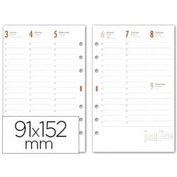 Recambio agenda finocam c499-semana a la vista 91x152mm catalan