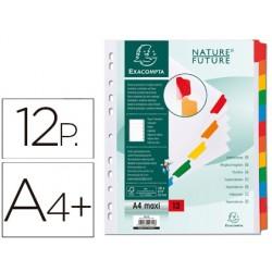 Separador exacompta cartulina juego de 12 separadores din a4+ multitaladro color blanco
